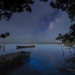 Fotógrafo registra a Via Láctea e a bioluminescência juntas e fotos impressionam